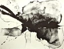 A View of Cherry Blossoms Ⅰ, Lithograph, 55.0X72.0cm, April 1997